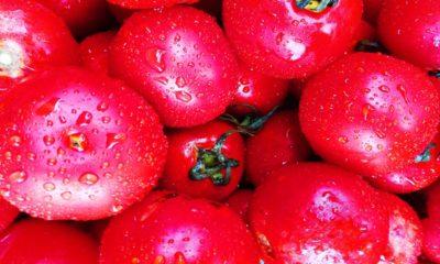 beneficios-y-propiedades-del-tomate-1