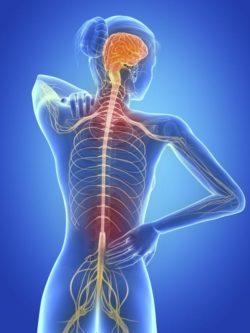 remedios-caseros-para-la esclerosis-multiple