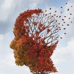 Una docena de hábitos que ayudan a regenerar las células cerebrales