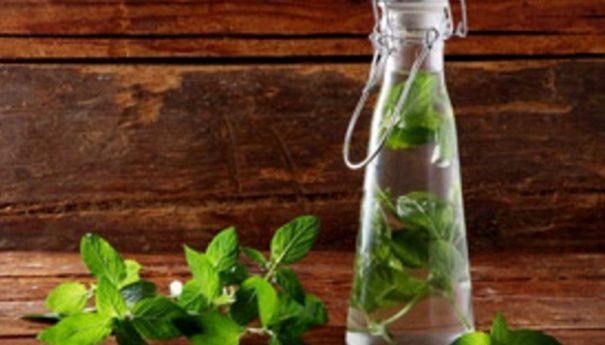 Los asombrosos beneficios para la salud de las hojas de menta