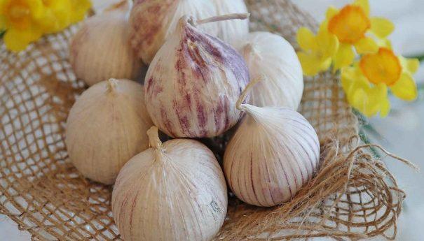 Grandes beneficios y propiedades del ajo para adelgazar