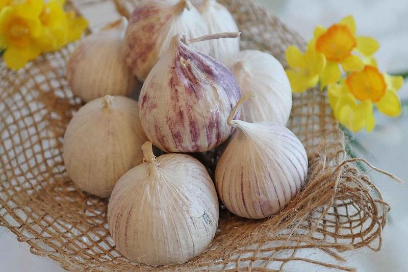 propiedades del ajo para adelgazar