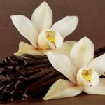 Grandes beneficios del extracto de vainilla casero para relajarte y cómo hacerlo